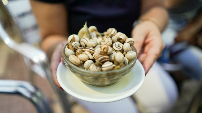Bowl of snails. Seville